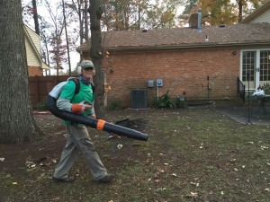 Leaf Removal Blower