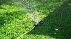 watering_your_lawn