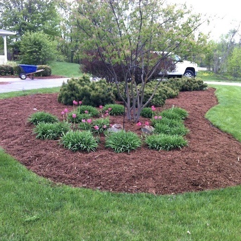 Lawn Care And Mowing Service Virginia Beach